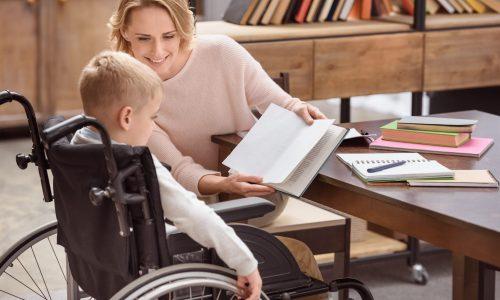 ADVF-CSS : Titre Assistant(e) de Vie aux Familles – Certificat de Compétence de Spécialisation : Handicap